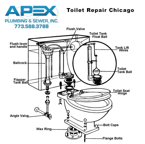 Toilet Repair Amp Installation Chicago Apex Plumbing